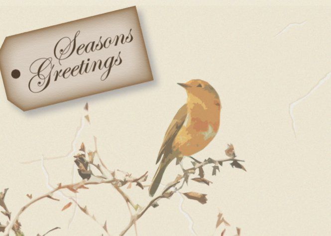 Little Bird Seasons Greetings